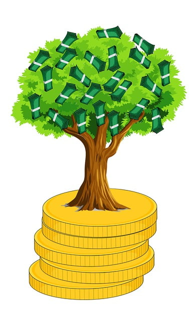 money growing on a tree stacked on coins